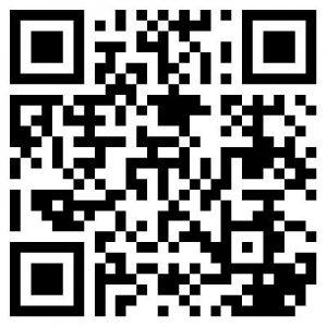 QR Code to www.qr4v.de!