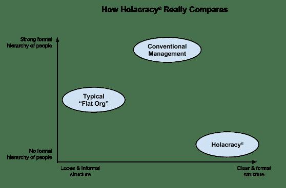 Diagram of a holacratic model.